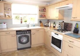 Kitchen Cupboards, Draws, Fan and Sink for sale