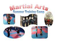 Kids Martial Arts Summer Camp