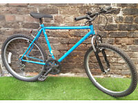 """Adults BLUE MOUNTAIN BIKE, 20"""" Frame, 15 Speed, Susp GC! FULLY SERVICED"""