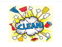 Cleaner looking for work - Fully Insured