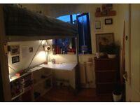 Single Room in Zone 1 Houseshare