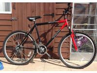 gents mountain bike/red and black