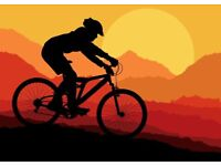 *** BIKES WANTED *** Mountain Bike Hybrid Boardman Carrera Specialized Trek Scott GT Giant. Dundee