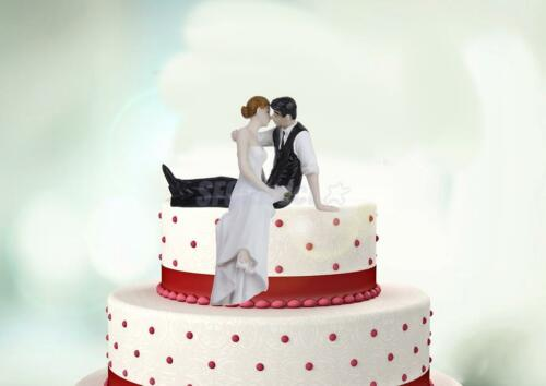 LOOK OF LOVE Couple Bride & Groom ...