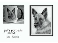 pet portraits from photos