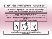 TEAM BUILD/ STAFF INCENTIVE EVENTS - AERIAL FITNESS: POLE, HOOP, SILKS
