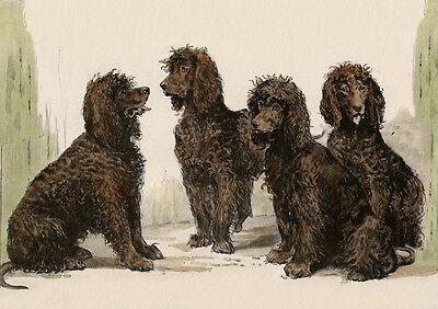IRISH WATER SPANIEL CHARMING DOG GREETINGS NOTE CARD BEAUTIFUL GROUP OF DOGS