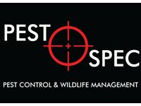 Pest Control, Rats, Mice, Wasps, Bedbugs, Fleas, Rabbits, Moles, Crawling Insects, Flying Insects