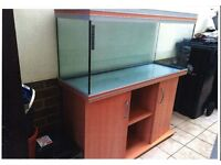 "RENA Tank 4ft x 16""x 51"" plus accessories (e.g pump, stand etc)"