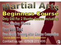 Martial Arts Beginners Classes