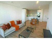 Brand new 2 bedroom flat in Meranti Apartments, Deptford Landings, Timberyard SE8