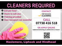 Domestic Cleaners Needed