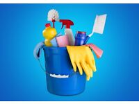 Cleaner required for office and home - four hours per week combined