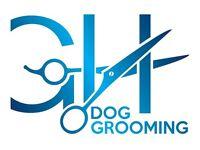 G&H Dog Grooming