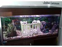 Beautiful fishtank and cabinet 250l light changer with remote £250