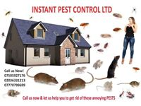 100% Guaranteed Pest Control 24/7 Mice,Rat, Bed bugs, Cockroach,Wasps,Ants,Flea,Beetle,Moth, Spiders