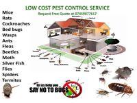 All London Pest Control Mice, Rat, Bedbug, Ants, Wasps, Flea, Beetle, 100% Guaranteed Satisfaction