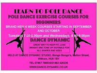 Adult Beginners Pole Dance Exercise 6 Week Courses at Dance Dynamic