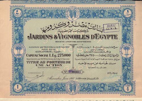 EGYPT Winery : Jardins & Vignobles  d