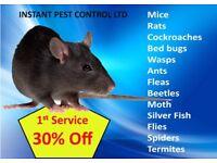 24/7 Pest Control Guaranteed 100% (Bedbugs, Mice,Rat,Cockroach,Wasps,Ants,Flea,Beetle,Moth,Spiders)