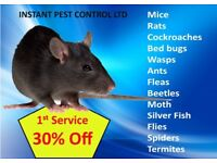 100% Guaranteed Pest Control 24/7 Mice, Rat, Bed bugs, Flea, Beetle, Cockroach, Ants, Wasps, Moth