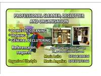 Professional Cleaner Declutter and Organisation