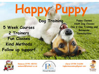 Puppy and Adult Dog training classes