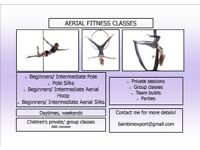 AERIAL FITNESS CLASSES - GROUP SESSIONS/ TEAM BUILDS/ PARTIES