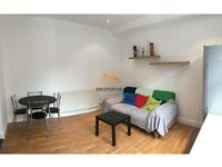 4 BED HOUSE TO LET, bAUTUMN STREET, HYDE PARK, 895PCM