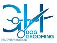 GH Dog Grooming