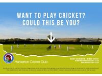 Want to play village cricket? All welcome at Harberton Cricket Club.