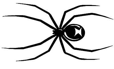 Spider Vinyl Graphics Decal for Car, Truck or Motorcycle (21