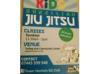 Kids Martial arts calls class