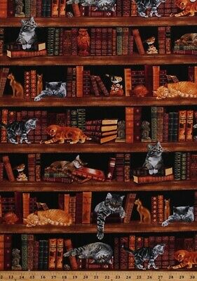 LIbrary Study Books with Cats & Kittens Timeless Treasures #