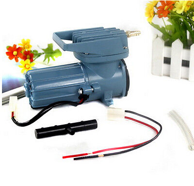 Dc12v 38lpm compressor air pump for fish pond hydroponics for Garden pond air pumps