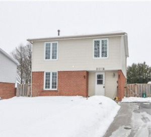 North Oshawa Home 9-12 month lease