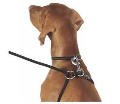 Dog Training Leash Pulling - Weiss Walkie Dog Training Leash Dog Harness In One - Safe No Pull  Made In USA