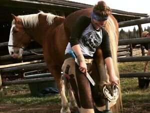 Farrier Services