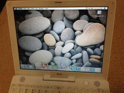 SALE! APPLE MAC iBook MICROSOFT OFFICE PRO MAC OS X Book LAPTOP G3 CD Cheap!