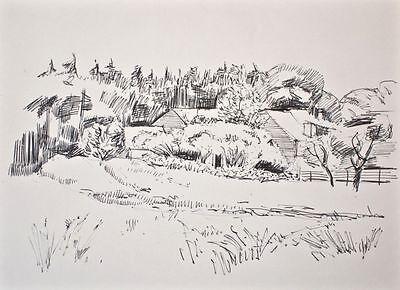 Sonja Wüsten - Zühlsdorf - Zeichnung - o. J.