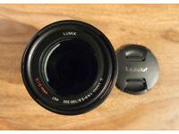 Panasonic Lumix G-Vario 100-300mm f/4-5.6 Mega OIS