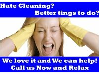 ****Domestic Cleaning and Ironing Services - Why not try US??****