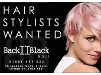 Hairdressing Stylists and Beauticians Required