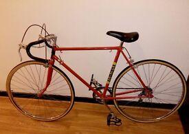 Mens Raleigh Road Bicycle