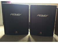 Pair of Peavey Speakers
