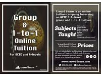GCSE and A-level Tuition Online (Group and 1-to-1)