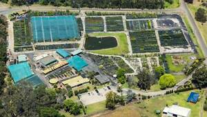 NURSERY CLOSING DOWN - OWNERS RETIRING - PROPERTY SOLD - SAVE! Theresa Park Wollondilly Area Preview