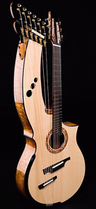 Looking for a Harp Guitar