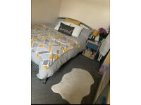 Female needed for lovely, social Cathays mixed houseshare. Recent refurbished :)