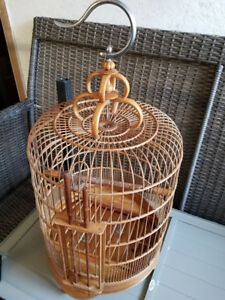 Bird Cage and Pair of Canaries